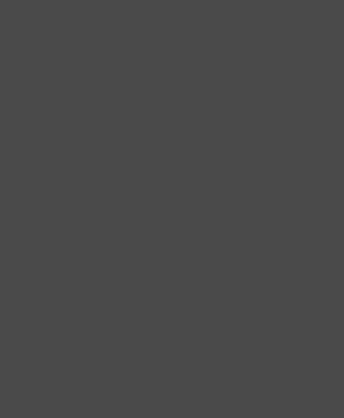 Cabeça Chata